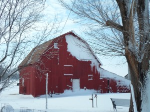 Winter Barn 2013